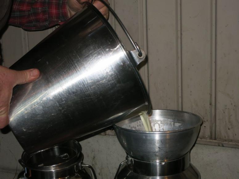 milk-strainer